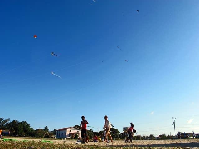 Kite Boys Treehouse Dungarees Navy Organic 0-5 Years