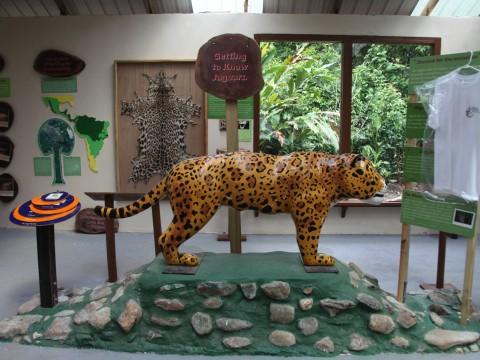 jaguar sculpture in museum in Belize