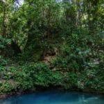 blue jungle pool or cenote in Belize