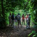 Hamanasi tour group on jungle trail
